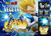 Dragon Ball Z: Super Saiyan Vegeta