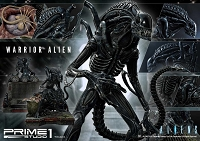 Aliens (Comics): Warrior Alien