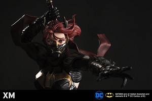 DCC Batgirl Full Pay